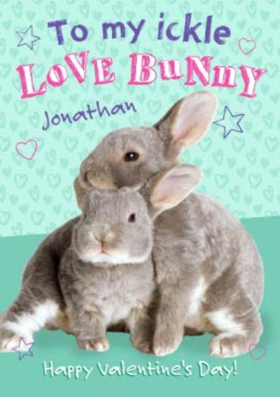 To My Love Bunny Happy Valentines Day Card