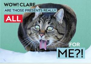 Greeting Cards - All For Me Greedy Cat Christmas Card - Image 1