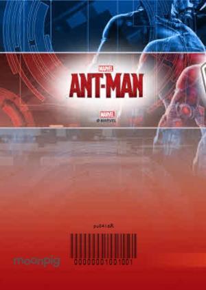 Greeting Cards - Ant-Man Birthday Card - Image 4