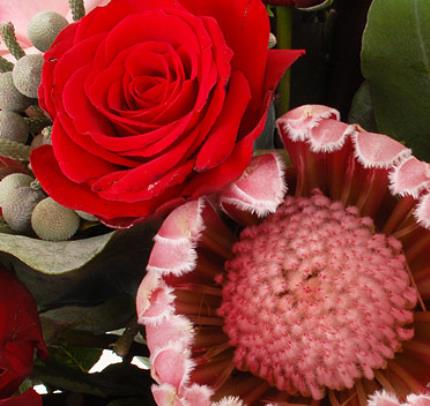 Flowers - Protea Bouquet - Image 3