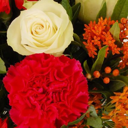 Flowers - Sunshine Fields - Image 3