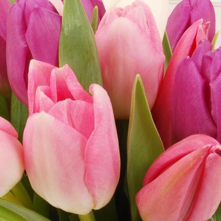 Flowers - Pastel Tulips Gift Bag - Image 3