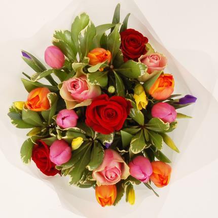 Flowers - Rainbow - Image 2