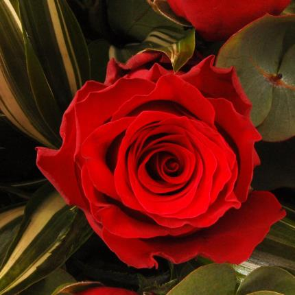 Flowers - Red Roses Bouquet - Image 3
