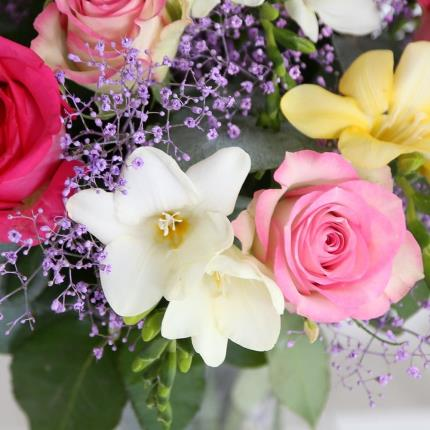 Flowers - Rose and Freesia - Image 4