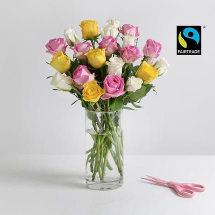 Flowers - The Fairtrade Rose - Image 2