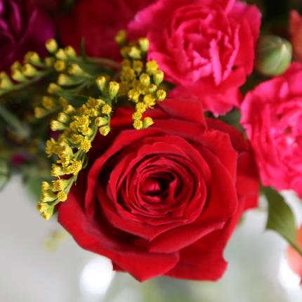 Flowers - The Fairtrade Rose & Alstroemeria - Image 3