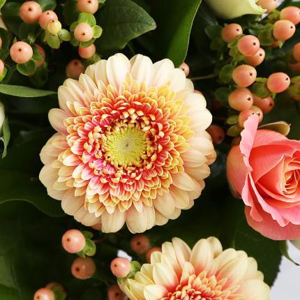 Flowers - Peaches & Cream - Image 2