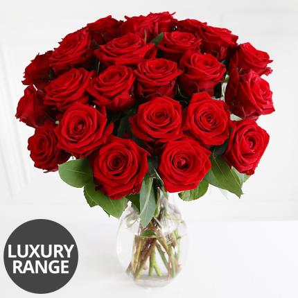 Flowers - Two Dozen Luxury Red Roses - Image 2