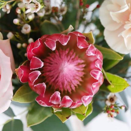 Flowers - Rose and Protea - Image 3