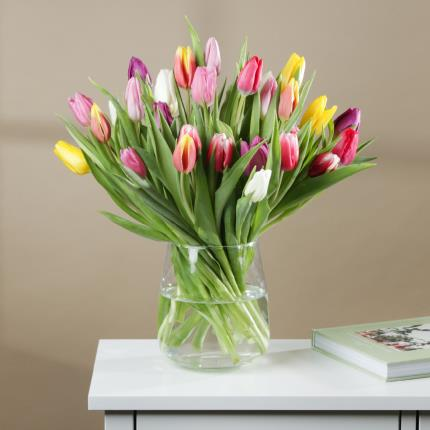 Flowers - The 30 Mixed Tulips - Image 2