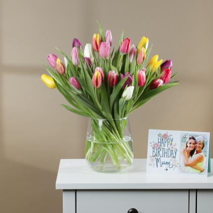 Flowers - The 30 Mixed Tulips - Image 3