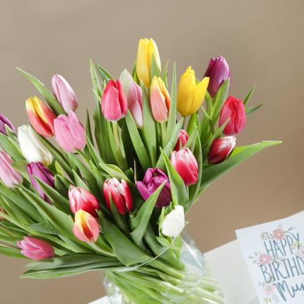Flowers - The 30 Mixed Tulips - Image 4