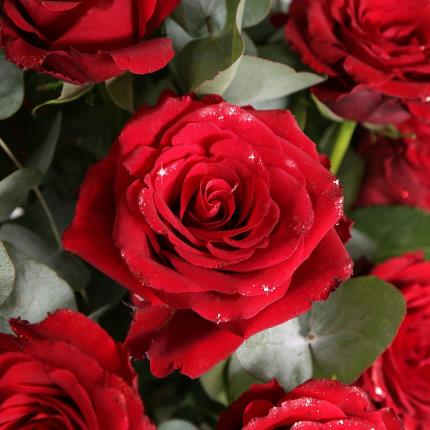Flowers - The Glitter & Sparkle Roses - Image 3