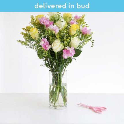 Flowers - The Rose & Freesia - Image 2