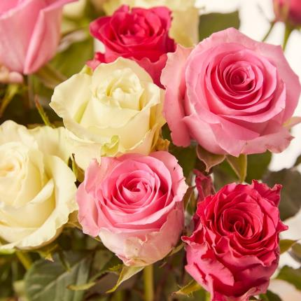 Flowers - The Mixed Roses - Image 4