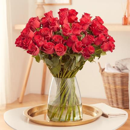 Flowers - The 48 Red Roses - Image 2