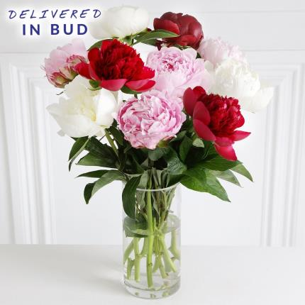 Flowers - Mixed Peony Bouquet - Image 2