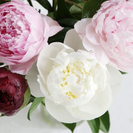Flowers - Mixed Peony Bouquet - Image 4