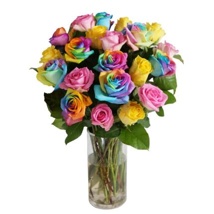 Flowers - The Grand Rainbow Roses - Image 5