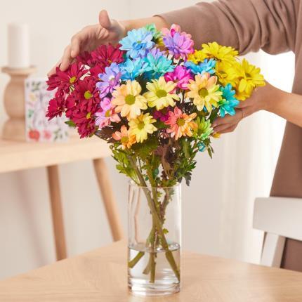 Flowers - The Rainbow Chrysanthemums - Image 3