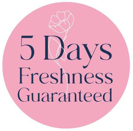 Flowers - The Rainbow Chrysanthemums - Image 5