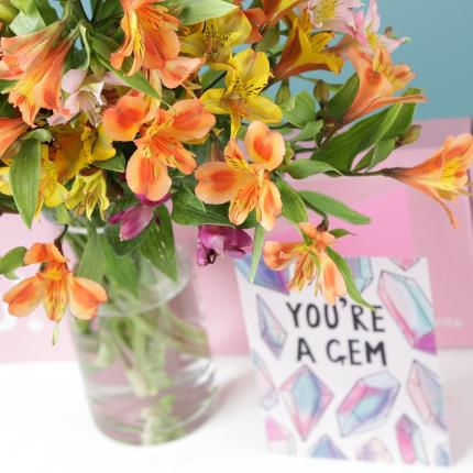 Flowers - The Letterbox Mixed Alstroemeria - Image 4