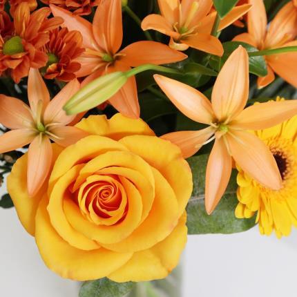 Flowers - The Autumn Sunrise - Image 3