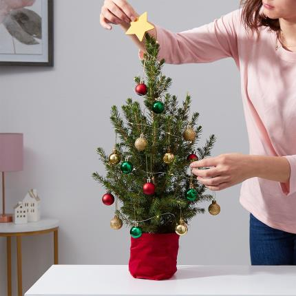 Flowers - The Letterbox Christmas Tree - Image 4