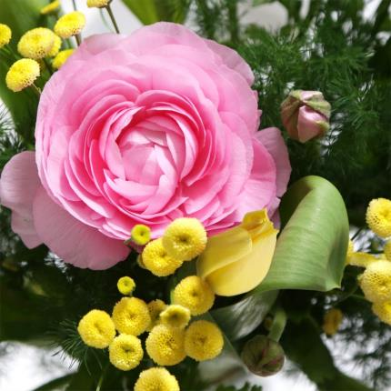 Flowers - The Spirit of Spring - Image 3