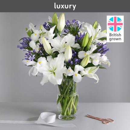 Flowers - The British Lily, Agapanthus and Iris - Image 3
