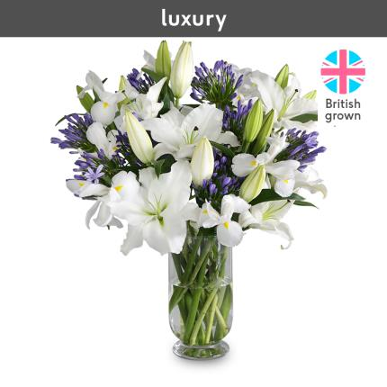 Flowers - The British Lily, Agapanthus and Iris - Image 4