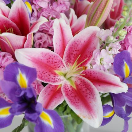 Flowers - The British Stocks, Lilies and Iris Bouquet - Image 2