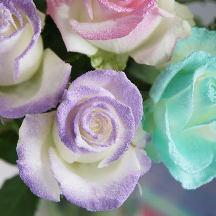 Flowers - The Letterbox Unicorn Roses - Image 3