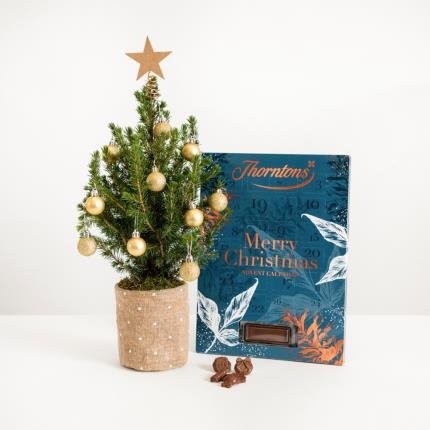 Flowers - The Christmas Tree & Advent Gift Set - Image 2