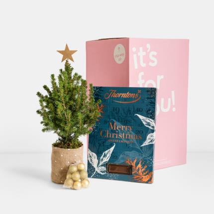 Flowers - The Christmas Tree & Advent Gift Set - Image 4