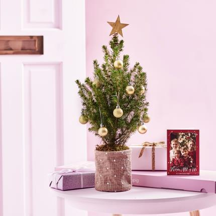 Flowers - The Letterbox Mini Christmas Tree - Image 3