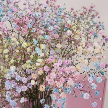 Flowers - The Letterbox Candyfloss Gypsophilia - Image 3