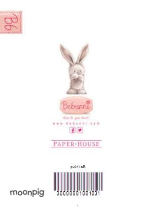 Greeting Cards - Be Bunni With Big Present Personalised Birthday Card - Image 4