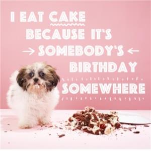 Greeting Cards - I Eat Cake Because Its Somebodys Birthday Somewhere Card - Image 1