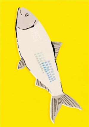 Greeting Cards - Big Fish On Bright Yellow Background Card - Image 1