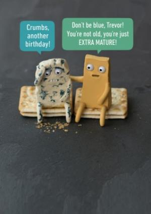 Cheese Pun Birthday Card