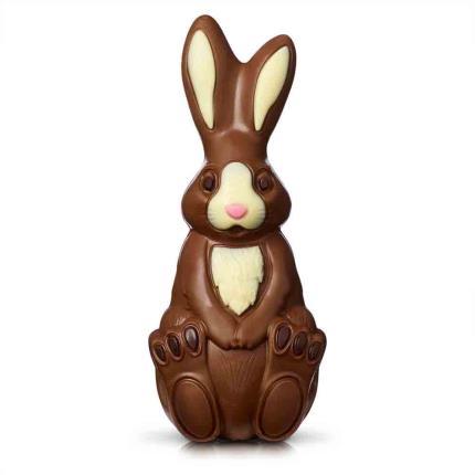 Food Gifts - Thorntons Milk Chocolate Bunny Gift Box - Image 1