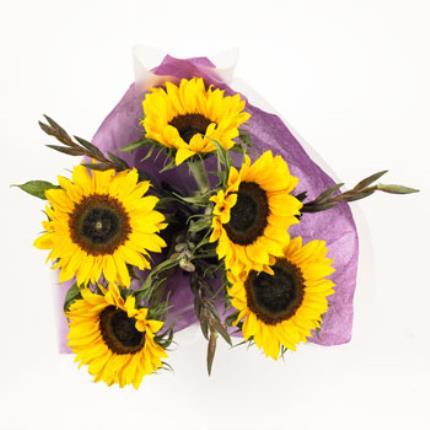 Plants -  British Sunflower & Gladioli - Image 3