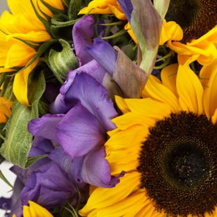 Plants -  British Sunflower & Gladioli - Image 4