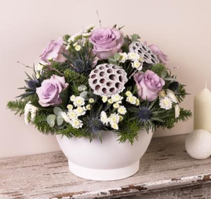 Plants - Christmas Rose Bowl  - Image 2
