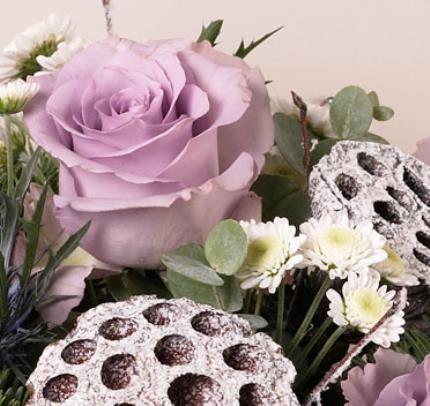 Plants - Christmas Rose Bowl  - Image 3