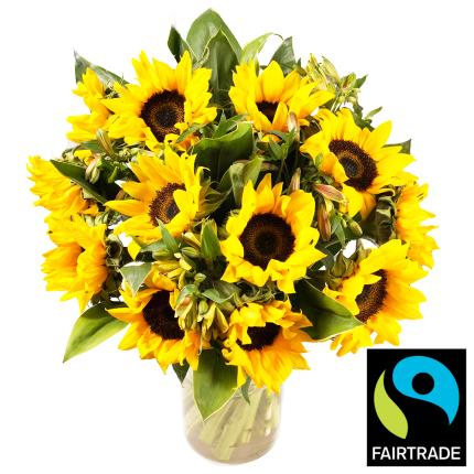 Plants - Fairtrade™ Sunflower Bouquet - Image 2