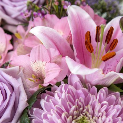 Plants - Luxury Lilac Gift Bag - Image 4
