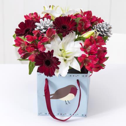 Plants - Robin Gift Bag - Image 2